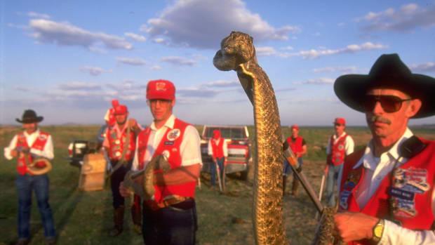 rattlesnake-derby.jpg