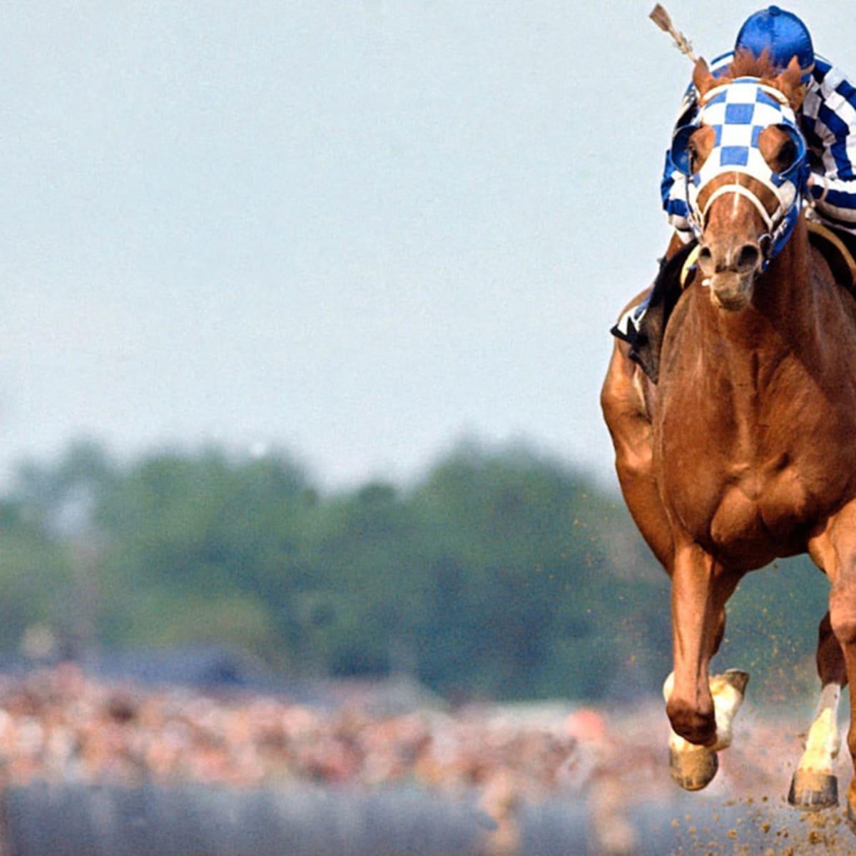 Betting gods horse racing guru tattoo stanley international betting limited express
