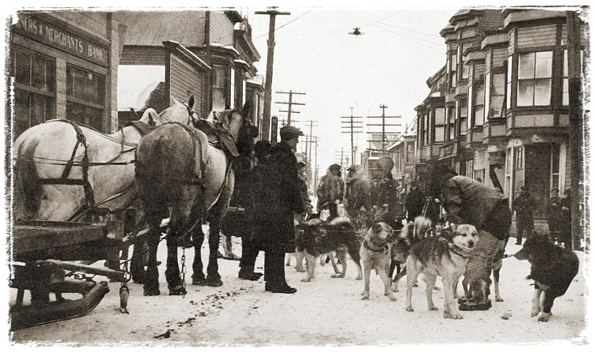 """WALKOFF, NOME RUN Arriving at the end of the relay five and a half days after it began, Kaasen is said to have staggered off his sled and declared to Balto: """"Damn fine dog."""""""